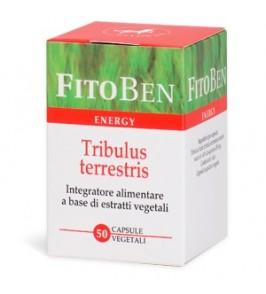 TRIBULUS TERRESTRIS 50CPS